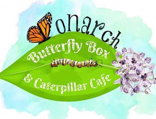Monarch Butterfly Box
