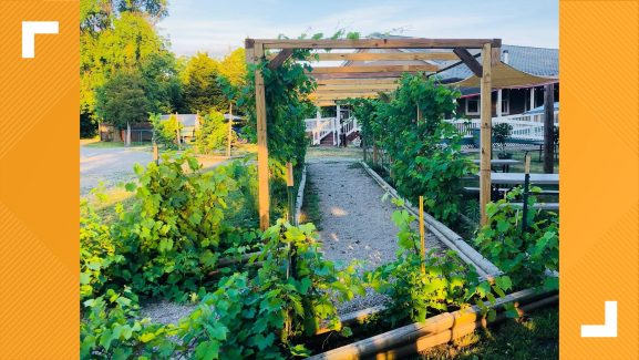 10 of the best Northeast Ohio wineries you need to visit